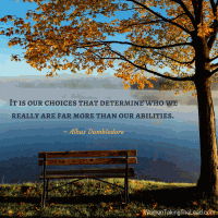 It is our choices that determine who we really are far more than our abilities